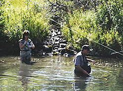 The Boulder River and Stillwater River areas provide a gorgeous backdrop to fishing trips in Southcentral Montana.